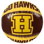 AFL Hawthorn HAWKS Inflatable Beach Ball
