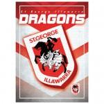 Dragons TEAM LOGO 1000PC PUZZLE